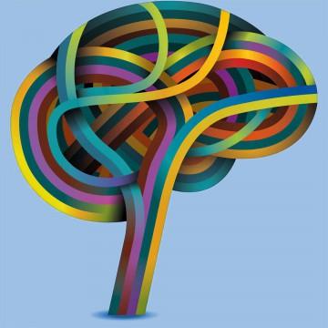 El progreso depende de las habilidades para administrar el pensamiento.