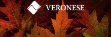 Carta de Noticias (in)formales · Abril-Mayo de 2015.Veronese Producciones · Publicidad Integral.
