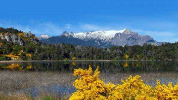 Primaveras argentinas en la Patagonia Andina.
