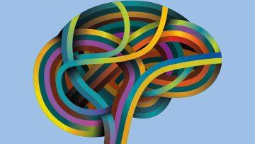 Posicionamiento siete más o menos dos y neuroplasticidad.