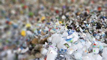 Veronese Producciones: ¿Reciclamos bien o reciclamos mal?