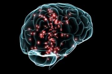 Los efectos de las caminatas sobre el cerebro alteran nuestra naturaleza humana.