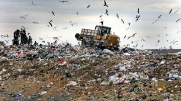 Los basurales constituyen un escándalo ambiental.