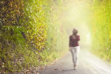 Naturaleza humana: caminata en el parque.
