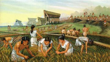 ¿Se avecina la era oscura del conocimiento ancestral para la agricultura?