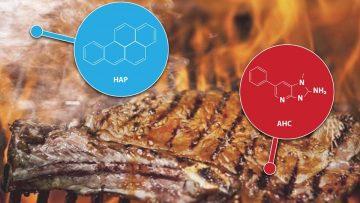 """AHC + HAP: el asado argentino """"al horno""""."""