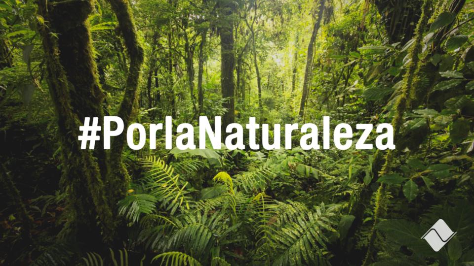 El Día Mundial del Medio Ambiente se celebra con el objetivo de sensibilizar a la población mundial en relación a temas ambientales, intensificando además la acción política.